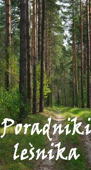 Poradniki leśnika Powszechne wydawnictwo rolnicze i leśne